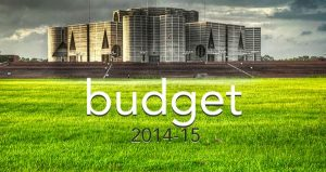 Macroeconomic Perspectives in Budget